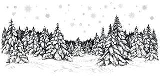 Wektorowa ilustracja śnieżne jodły Zima las zakrywający z śniegiem, ręka rysujący nakreślenie ilustracja wektor