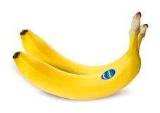 Wektorowa ilustracja dwa banana Fotografia Royalty Free
