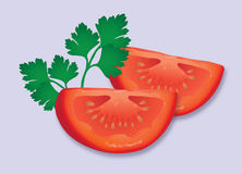 Pomidoru i pietruszki garnirunek ilustracji