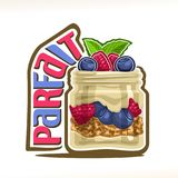Wektorowa ilustracja granola Parfait royalty ilustracja