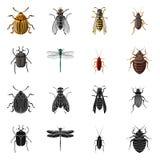 Wektorowa ilustracja insekta i komarnicy logo Set insekta i elementu akcyjna wektorowa ilustracja royalty ilustracja