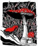 Wektorowa ilustracja jadowita żaby i komarnicy bedłka ono rozrasta się ilustracja wektor