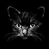 Wektorowa ilustracja kot głowa Obrazy Stock