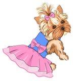 Wektorowa ilustracja kreskówki mody śliczny pies royalty ilustracja