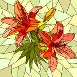 Wektorowa ilustracja kwiat czerwieni leluje. Ilustracji