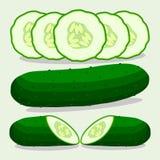 Wektorowa ilustracja logo dla zielonego ogórka ilustracji