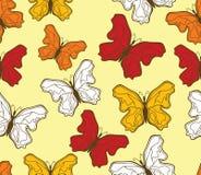 Motyli wzór Zdjęcia Stock