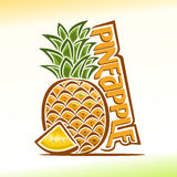 Wektorowa ilustracja na temacie ananas Zdjęcia Stock