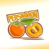 Wektorowa ilustracja na temacie persimmon Obraz Stock