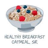 Wektorowa ilustracja oatmeal na białym tle Zdjęcia Royalty Free
