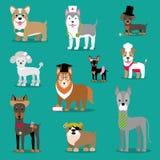 Wektorowa ilustracja pies Dziecka ` s śmieszni obrazki Zwierzęta z akcesoriami ilustracja wektor