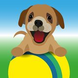 Wektorowa ilustracja pies z piłką royalty ilustracja