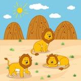 Wektorowa ilustracja (pogodny safari dzień z lwami) Zdjęcia Royalty Free