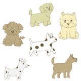 Wektorowa ilustracja psina sześć kawałków Różny kędzierzawy, z włosami, mały royalty ilustracja