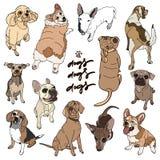 Wektorowa ilustracja różny psa traken ilustracja wektor