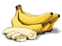 Wektorowa ilustracja rysunkowi owocowi banany Zdjęcie Stock
