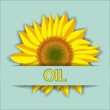 Wektorowa ilustracja słonecznikowy kwiat głowy odgórny widok i oleju literowanie Zdjęcie Stock