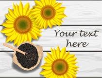 Wektorowa ilustracja słonecznik kwitnie i ziarna na popielatym drewnianym stole Obrazy Royalty Free