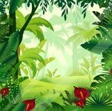 Wektorowa ilustracja tło dżungli gazon w ranku czasie Jaskrawa kolorowa dżungla z paprociami, drzewa, krzaki, winogrady royalty ilustracja