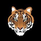 Wektorowa ilustracja tygrys głowa zdjęcia stock