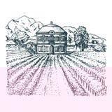 Wektorowa ilustracja winnica Wręcza nakreślenie willa, farmę w polach i wzgórza, Patroszony śródziemnomorski krajobraz ilustracja wektor
