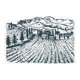 Wektorowa ilustracja winnica Wr?cza nakre?lenie willa, farm? w polach i wzg?rza, Patroszony ?r?dziemnomorski krajobraz ilustracja wektor