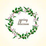 Wektorowa ilustracja wiosny okwitnięcie ilustracji