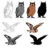 Wektorowa ilustracja, wizerunek sowa w różnych kątach, siedząca sowa, latająca sowa Czarny linii, czarny i biały i szarego spo, Obrazy Stock