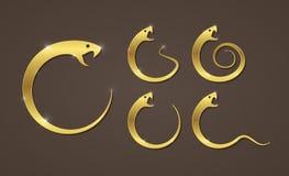 Wektorowa ilustracja złoty wąż Fotografia Stock