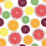 Wektorowa ilustracja z pomarańczami, cytrynami, grapefruits, wapno i tangerines cytrusa, dzwoni royalty ilustracja