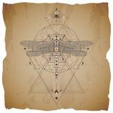 Wektorowa ilustracja z ręka rysującym dragonfly i Święty geometryczny symbol na rocznika papieru tle z poszarpanymi krawędziami A ilustracja wektor