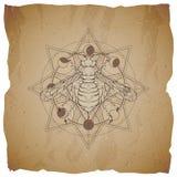 Wektorowa ilustracja z ręka rysującą osą i Święty geometryczny symbol na starym papierowym tle z poszarpanymi krawędziami Abstrak royalty ilustracja