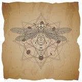 Wektorowa ilustracja z ręka rysującym Dragonfly i Święty geometryczny symbol na starym papierowym tle z poszarpanymi krawędziami  ilustracja wektor