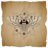 Wektorowa ilustracja z ręka rysującym Nieżywej głowy ćma i Święty geometryczny symbol na starym papierowym tle z poszarpanymi kra royalty ilustracja