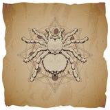 Wektorowa ilustracja z ręka rysującym pająkiem i Święty geometryczny symbol na starym papierowym tle z poszarpanymi krawędziami A ilustracja wektor