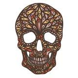 Wektorowa ilustracja z ręka Rysującą czaszką Zdjęcia Royalty Free
