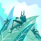 Wektorowa ilustracja zieleni pasikoniki opuszcza na liściach z jaskrawym nieba tłem Insekt śliczna wektorowa ilustracja ilustracja wektor