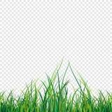 Wektorowa ilustracja zielonej trawy pole Obrazy Stock