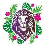 Wektorowa ilustracyjna lew głowa Chłodno lew głowy dekoracyjny mieszkanie de Zdjęcia Stock
