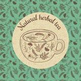 Wektorowa ilustracyjna nakreślenie karta - ziołowa herbata Obrazy Stock