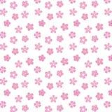 Wektorowa Japan Sakura wiśnia Obrazy Stock