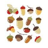 Wektorowa jesień ustawiająca z acorn ilustracji