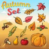 Wektorowa jesień ustawiająca z liśćmi, warzywami i owoc jesieni, royalty ilustracja