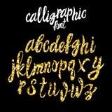 WEKTOROWA kaligraficzna chrzcielnica, złocistego pyłu tekstury pismo Fotografia Stock