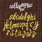 WEKTOROWA kaligraficzna chrzcielnica, złocistego pyłu tekstury pismo na brown drewnie Zdjęcia Royalty Free