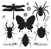 Wektorowa kolekcja Czarnej ręki insekta Rysujący kształty ilustracja wektor