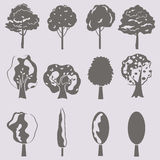 Wektorowa kolekcja drzewne sylwetki odizolowywa ilustracji