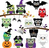 Wektorowa kolekcja Straszne Halloweenowe sowy royalty ilustracja