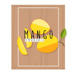 Wektorowa kolorowa ilustracja mangowi plasterki w płaskim projekta stylu Obraz Royalty Free