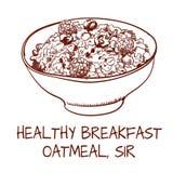 Wektorowa kontur ilustracja oatmeal na białym tle Obrazy Royalty Free